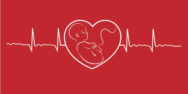ventiquattresima settimana di gravidanza