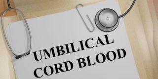 Legislazione in materia di donazione delle cellule staminali