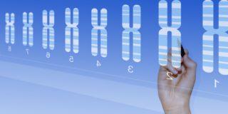 Test anomalie cromosomiche