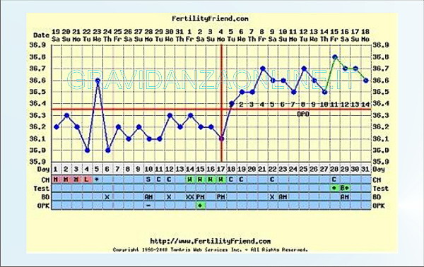 Grafico temperatura basale con gravidanza