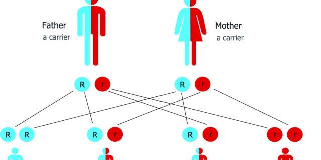Elettroforesi delle emoglobine