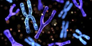 Cos'è la mutazione genetica Mthfr e quali sono le sue conseguenze