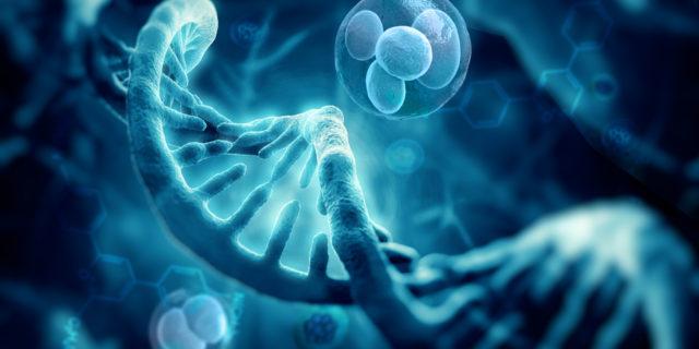 sindrome x fragile genetica