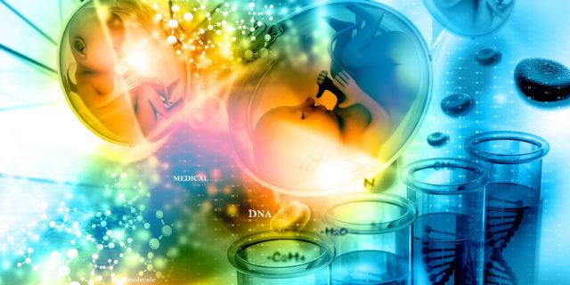 Il rischio dei bimbi nati in provetta