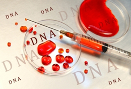 Gravidanza, un prelievo di sangue per individuare le sindromi di Edwards e Patau