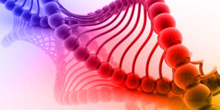 Screening prenatale non invasivo per individuare la Sindrome di DiGeorge: primo caso in Italia