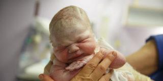 Lotus Birth: per i neonatologi non s'ha da fare