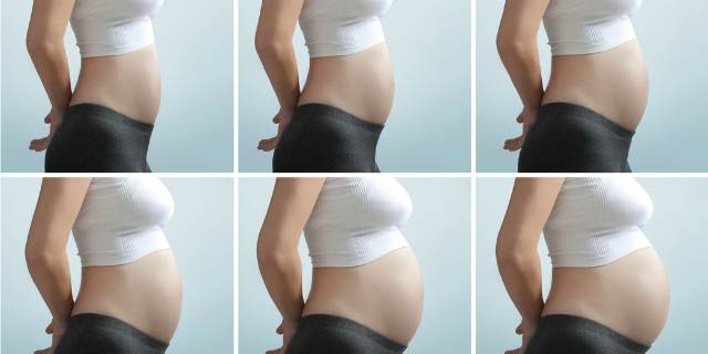 Il calendario della gravidanza settimana per settimana