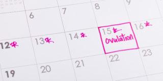 Calendario della fertilità per individuare l'ovulazione