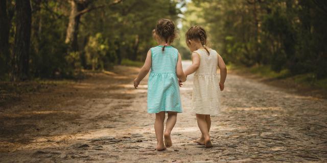 gemelli monozigoti eterozigoti