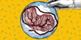 Mangiare la placenta non fa male (ma non serve), dice uno studio
