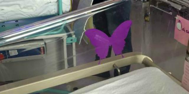 """Il triste significato della """"farfalla viola"""" sulla culla di un neonato"""