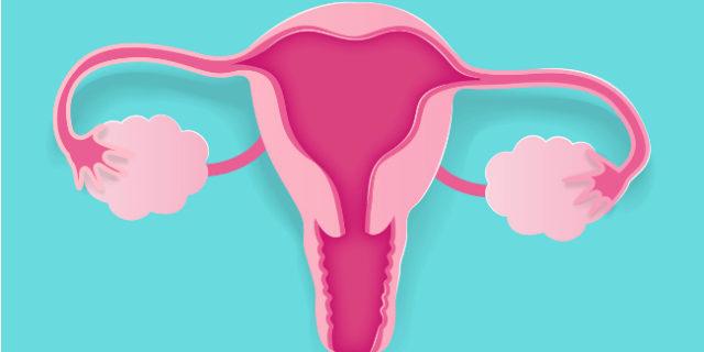 """Resettoscopia, le 5 cose da sapere sull'operazione che """"pulisce"""" l'utero"""