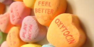Ossitocina, il segreto dell'amore in un ormone