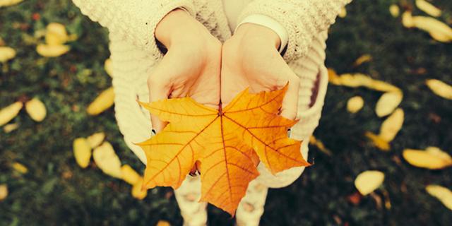 bambini autunno foglie secche