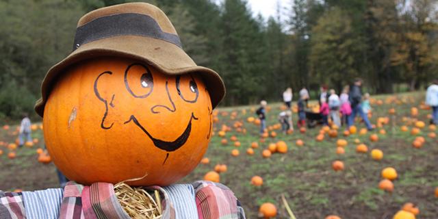 spaventapasseri bambini autunno