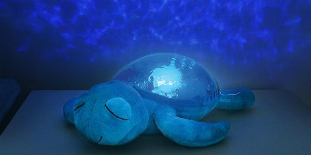 regalo natale tartaruga