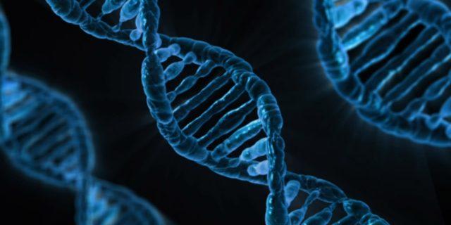 Consulenza genetica: quando richiederla e cosa può dire