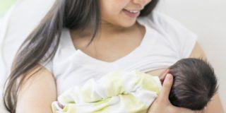 Paracapezzoli: come sceglierli e come usarli quando si allatta