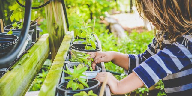 """Vivere """"green"""" con i bambini piccoli: 5 consigli da mamma"""