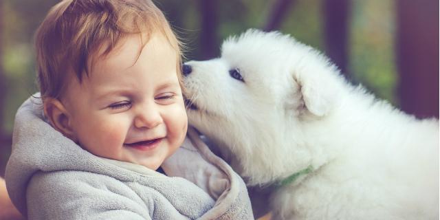 Cani e bambini: le 5 regole per una convivenza felice