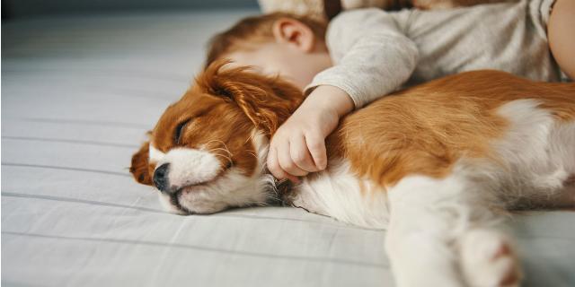 Cani e bambini: 5 regole per una convivenza felice