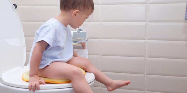 Morbido, quadrato o portatile: come scegliere il riduttore wc per bambini