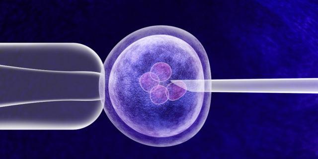 Transfer degli embrioni: riesce sempre? Cos'è e come funziona