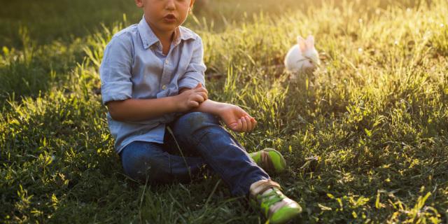 bambini e zanzare