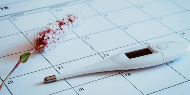 Monitor di ovulazione: i 7 modelli migliori per scoprire i giorni fertili