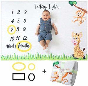 Odoxia, Baby Milestone Blanket