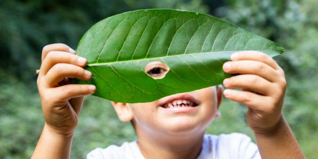 """10 attività """"green"""" da fare con i bimbi in primavera (anche in casa)"""
