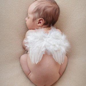 ZMVA, ali d'angelo