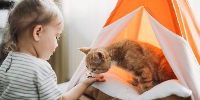 Festa del Gatto: sai che la convivenza tra gatti e bambini ha benefici psicofisici?