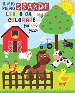 Il Mio Primo Grande Libro da Colorare Per i Più Piccoli - 1-3 anni