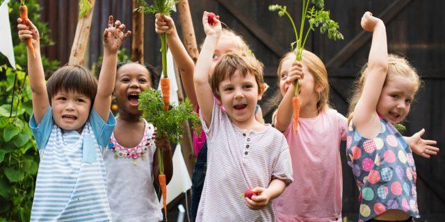A contatto con la natura con l'orto didattico a misura di bambini