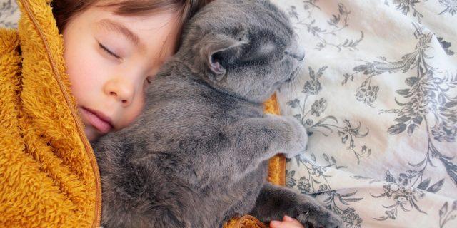 Dormire con un animale domestico aiuta il sonno dei bambini, lo studio