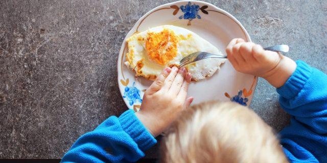 Cibi per la mente: gli alimenti che aiutano lo sviluppo del cervello del bambino?